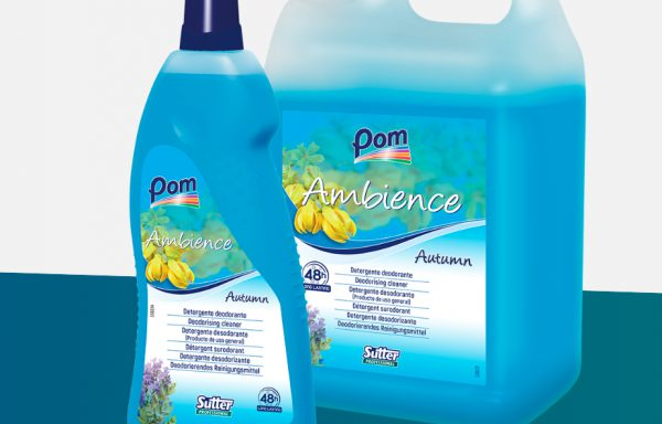 AMBIENCE AUTUMN detergente fl.lt.1