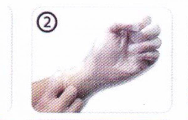 GUANTI DOC TPE POWDER FREE – Guanto Monouso elasticizzato