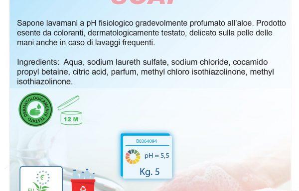 B.GREEN SOAP ECOLABEL – tanica 5 Kg