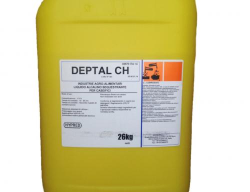 DEPTAL CH – tanica 24 Kg